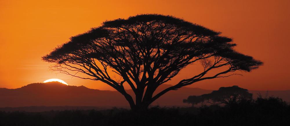 rick sammon sunrise in africa.jpg