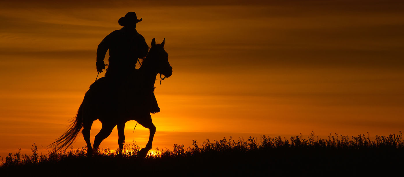 Cowboys Cowgirls Rick Sammon Photography