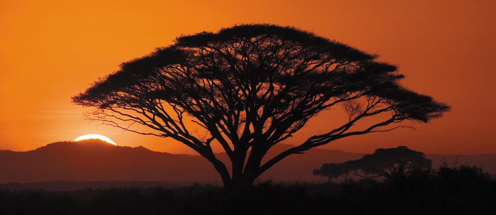 rick sammon sunrise in africa.jpg