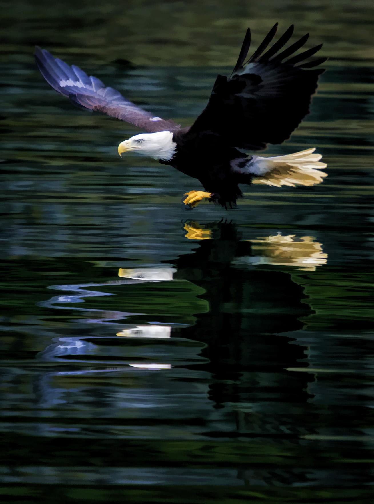 Rick Sammon Alaska.jpg