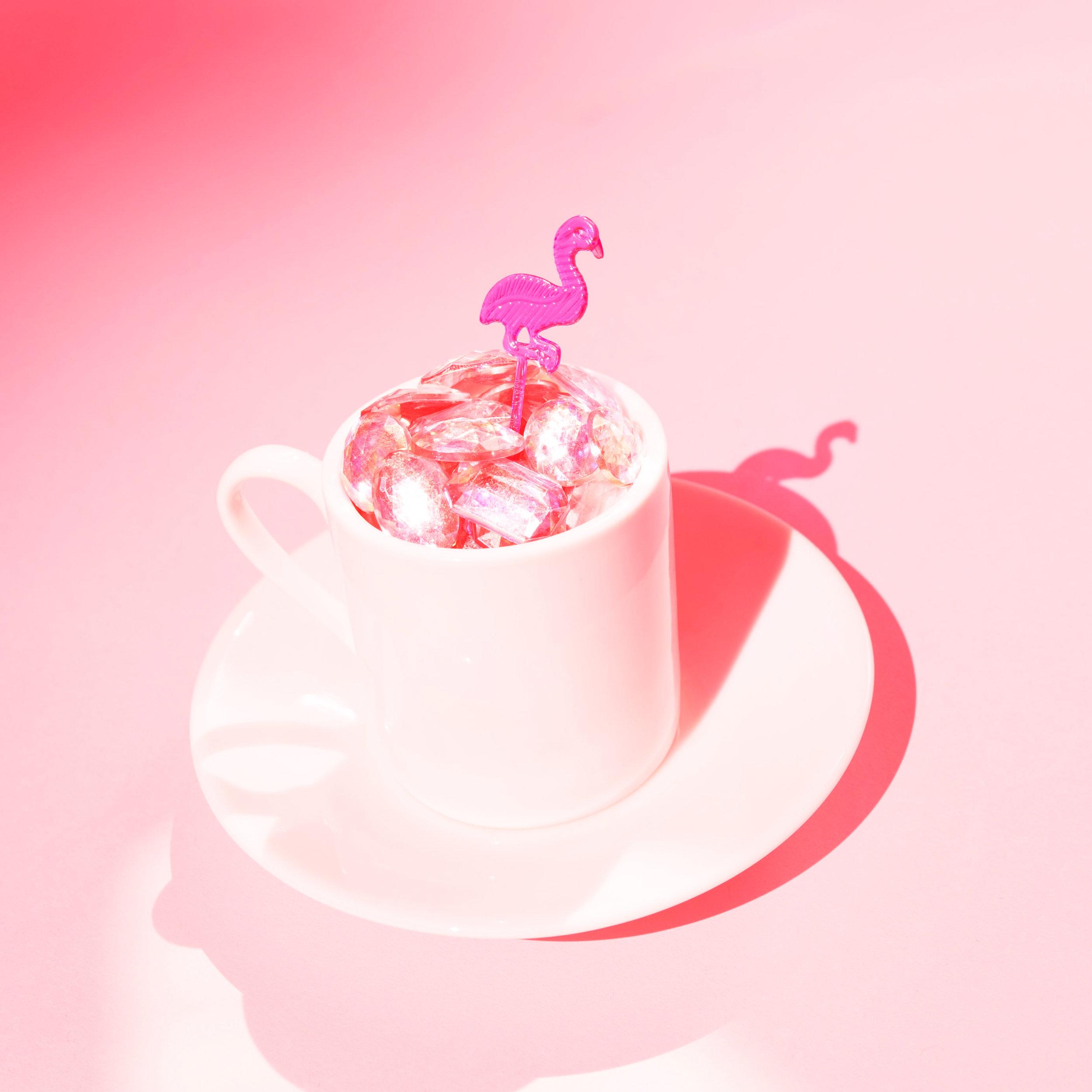 Pink Flamingo Rhythm Revue,