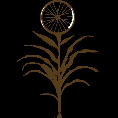 bike farm logo.png