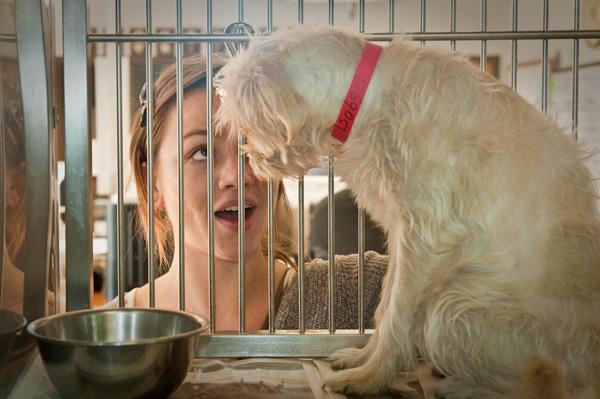 dog_eat_dog_12_5-102.jpg