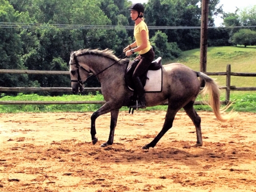 "I'm 5'9"" with very long legs, and CJ certainly takes them up. She rides like a much larger horse."