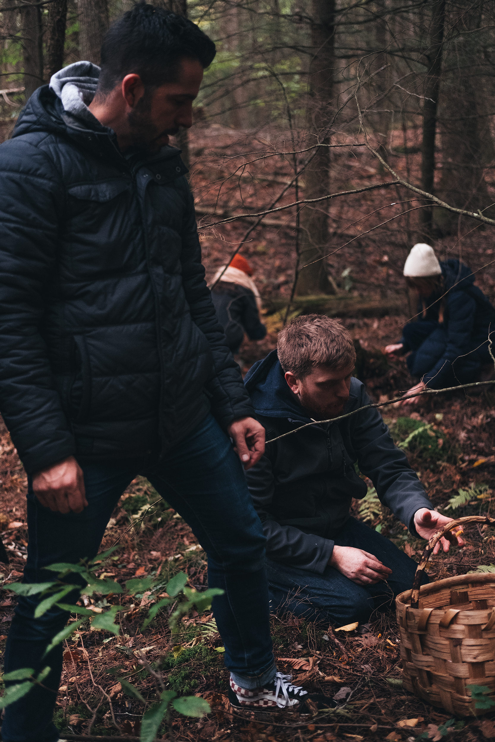 Understanding process together while foraging for mushrooms.