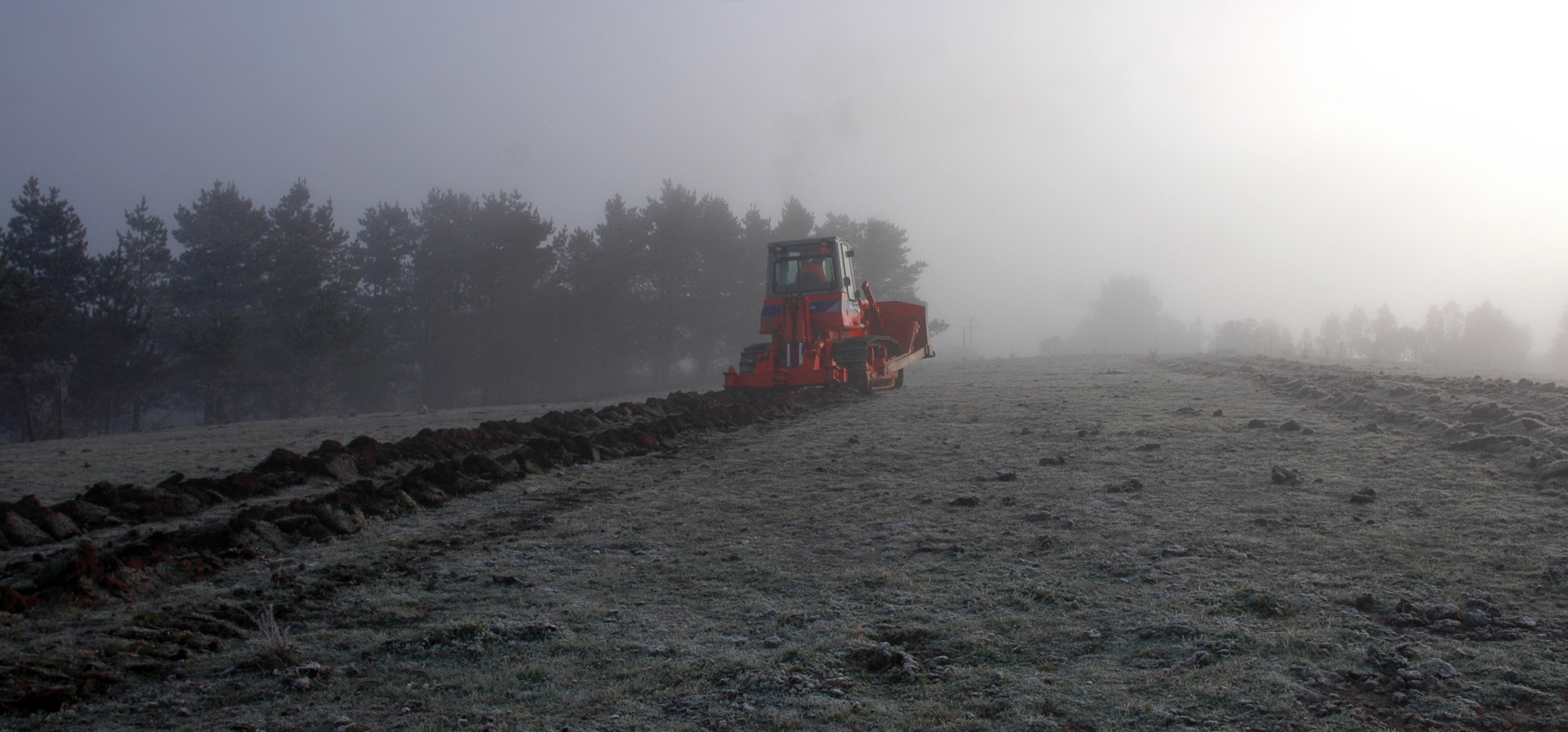 Preparing the Gruner Veltliner vineyard for planting