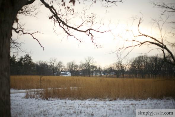 Midwest Winter PrairieIMG_2391
