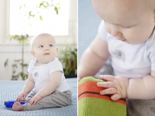 6 month baby photography