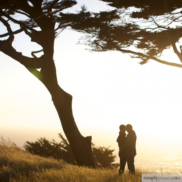 Cypress trees, ocean and engaged couple