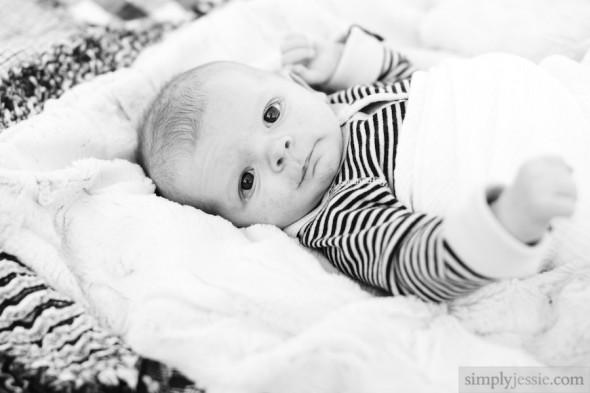 Newborn Photography in Chicago Park