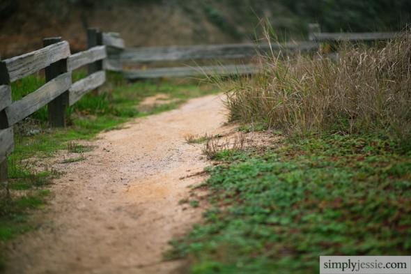 Fine Art Bay Area Photography