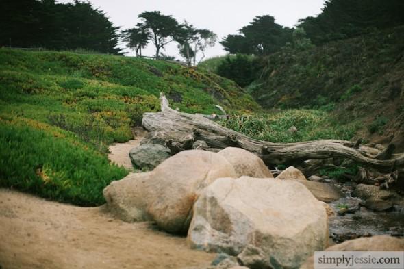 N California Coast