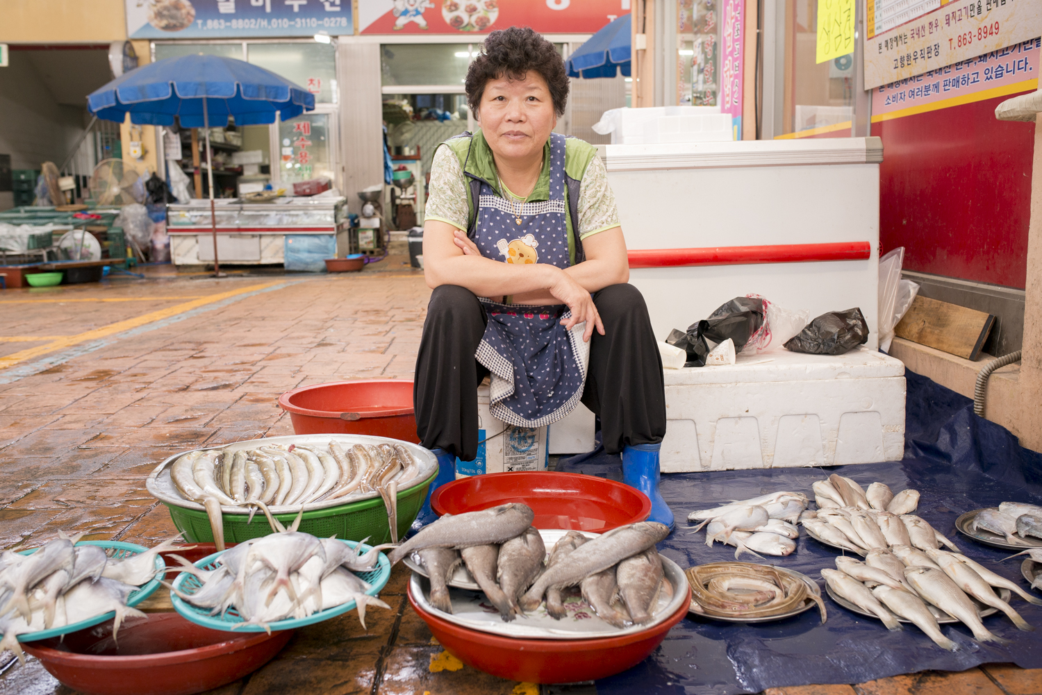 Fresh fish and a lovely lady at the Jangheung Saturday Market.