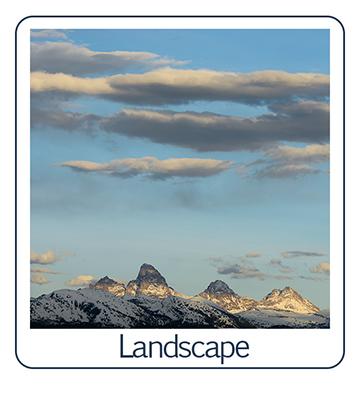 LandscapeButtonSMALL.jpg