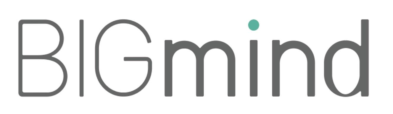 bigmind_logo.jpg