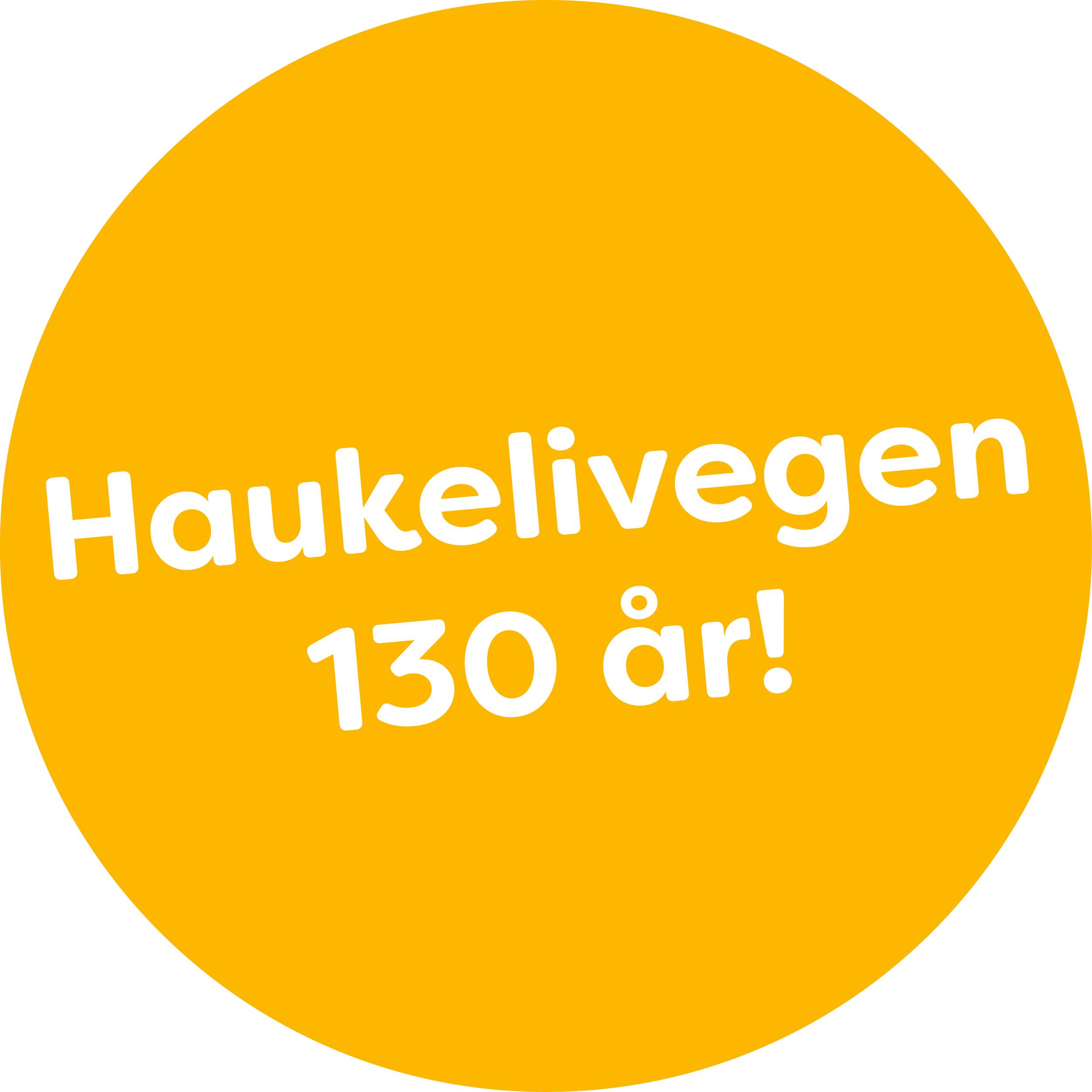 Gul runding Haukelivegen 130 år.png