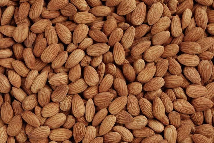 almond-kernels[1].jpg