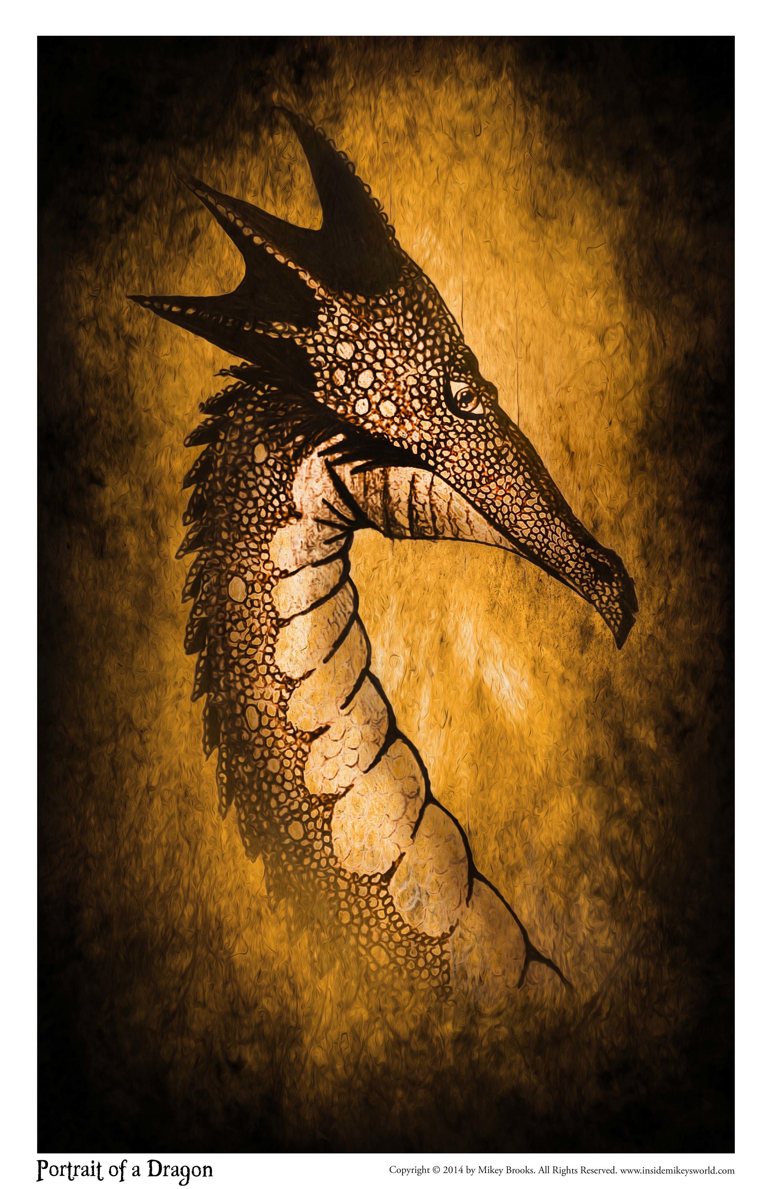 Portrait of a Dragon.jpg