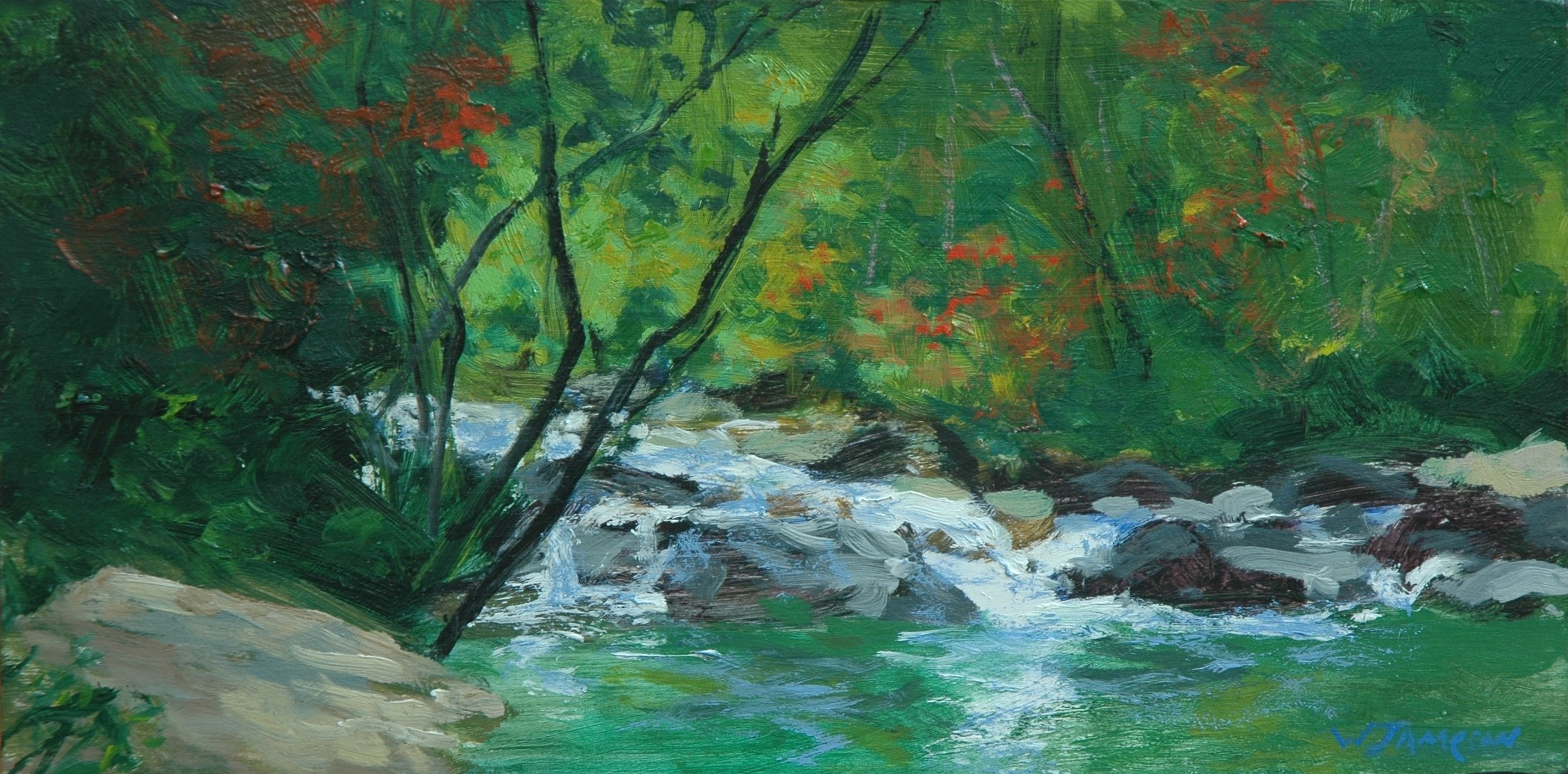 Carolina Creek Rapids 6x12 $750.jpg