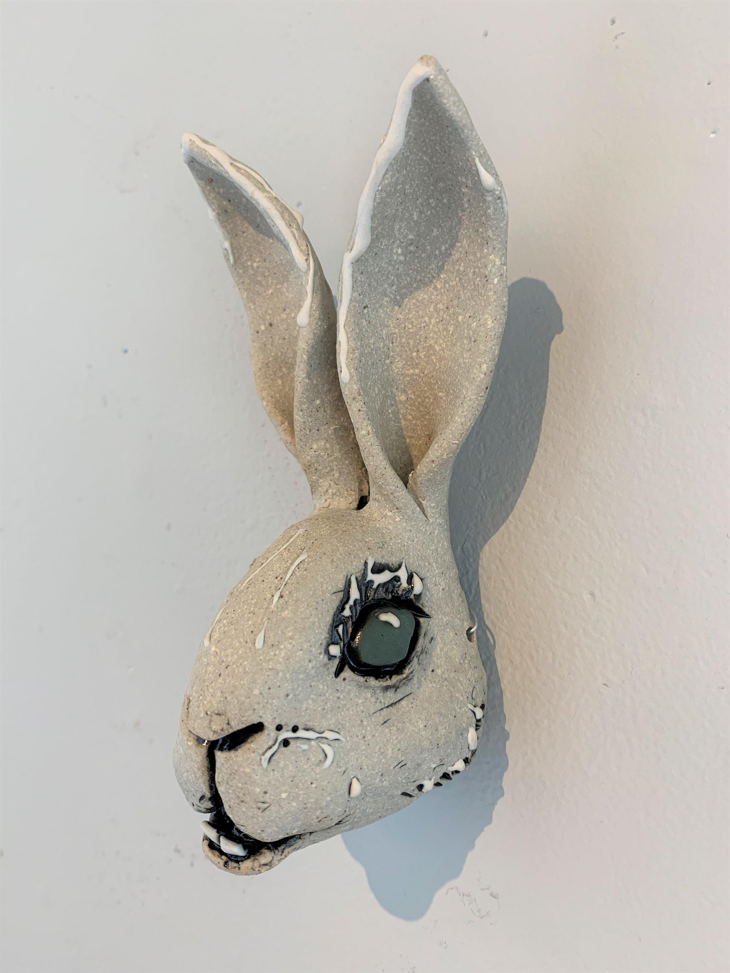 Hare Head 7 6.5x3