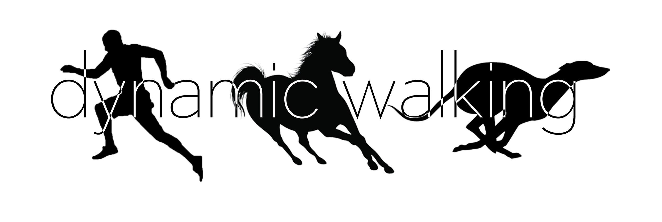2012 Dynamic Walking Conference - May 21-24, 2012