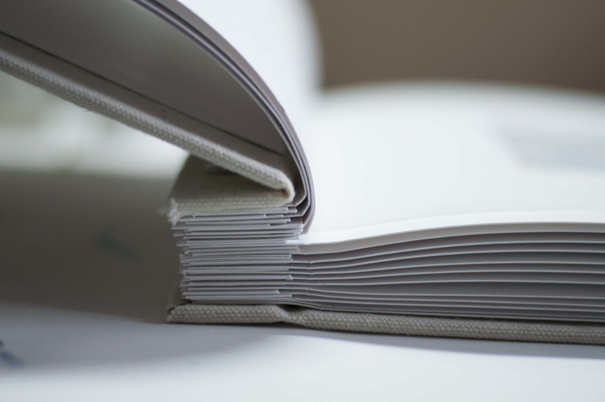 Massanutten Book2_1.jpg