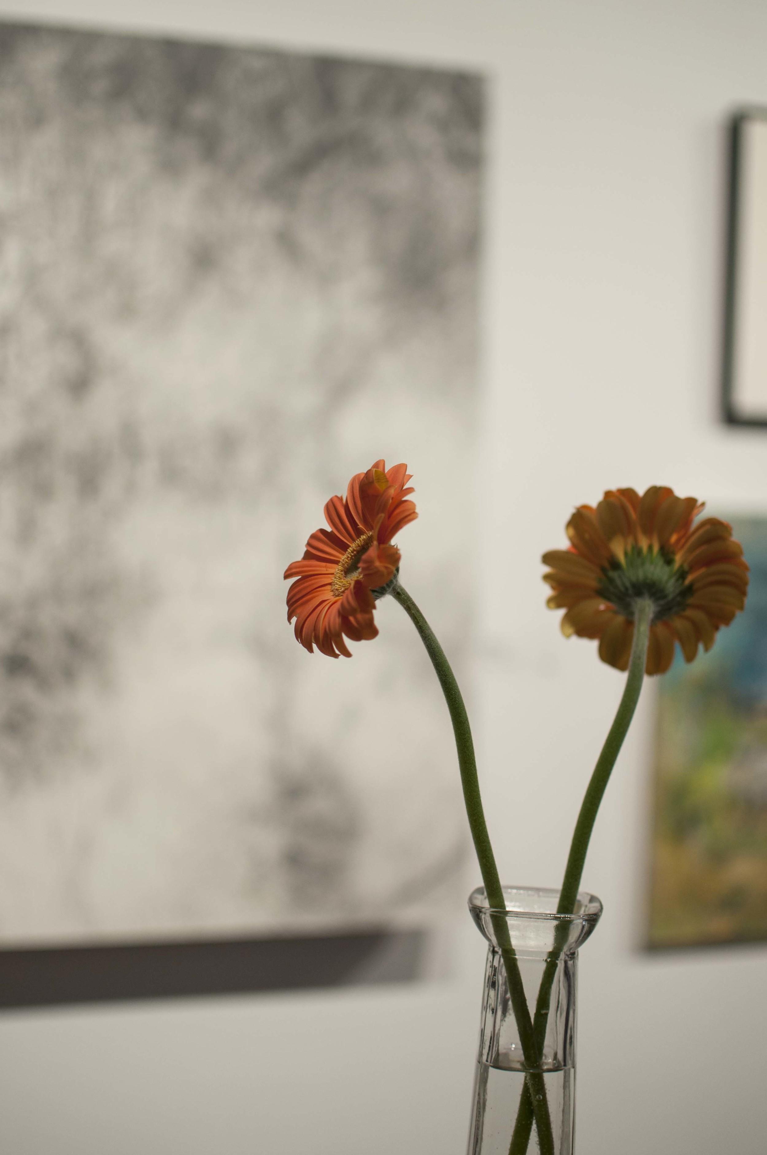 Scope_exhibitions_35.jpg