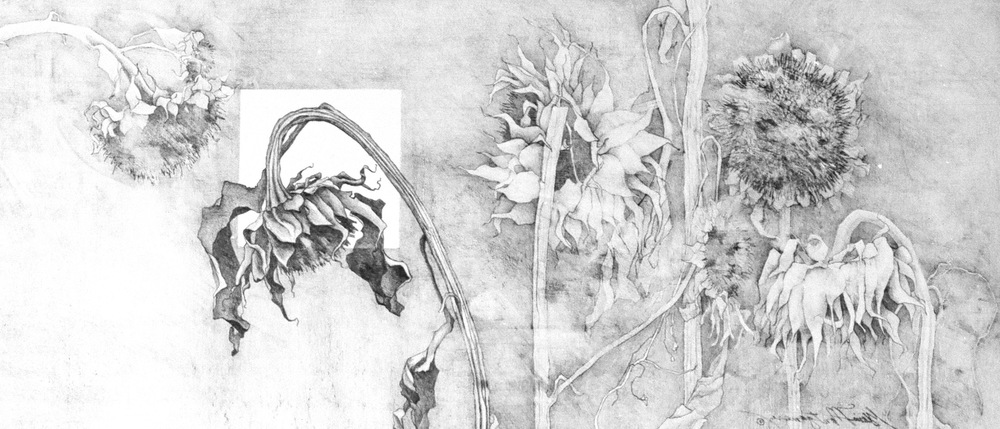 "'Silence'  Pencil Drawing  11"" x 26"""