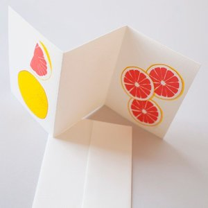 grapefruit4.jpeg