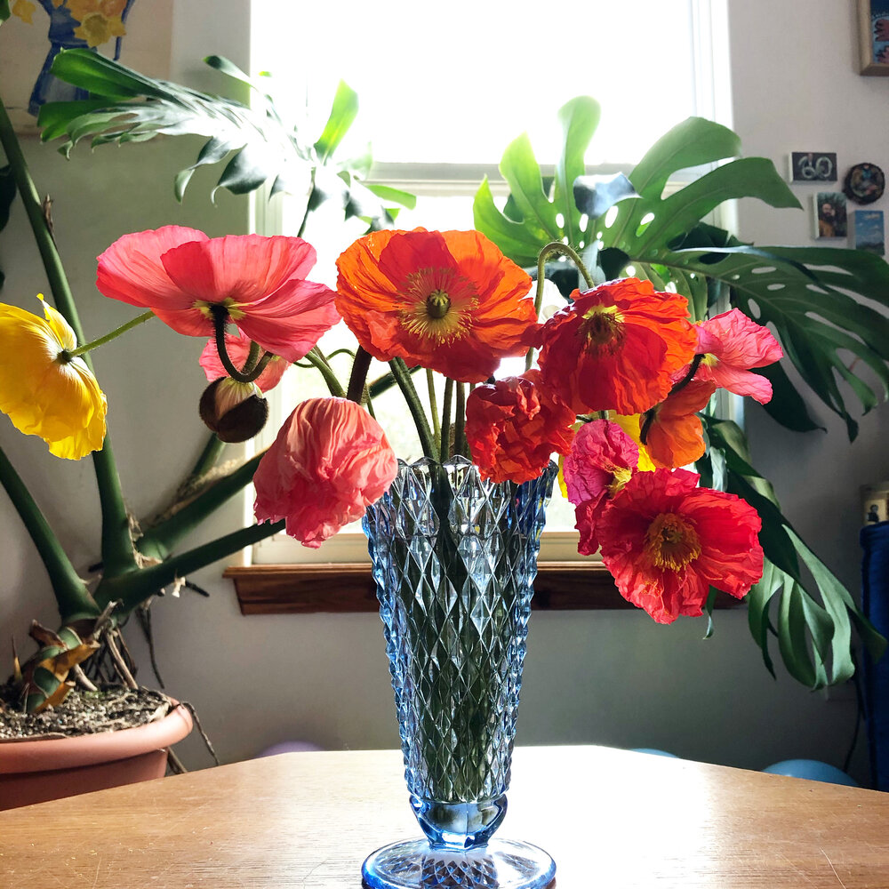 Jessi's original photo of her floral arrangement submitted to the Greenhouse project using #bppgreenhouse on Instagram.  @jkstreator