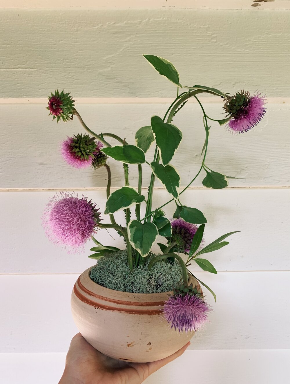 Hannah's floral arrangement for the Greenhouse print series.
