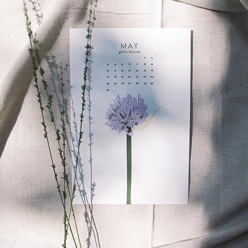 may_square.jpg