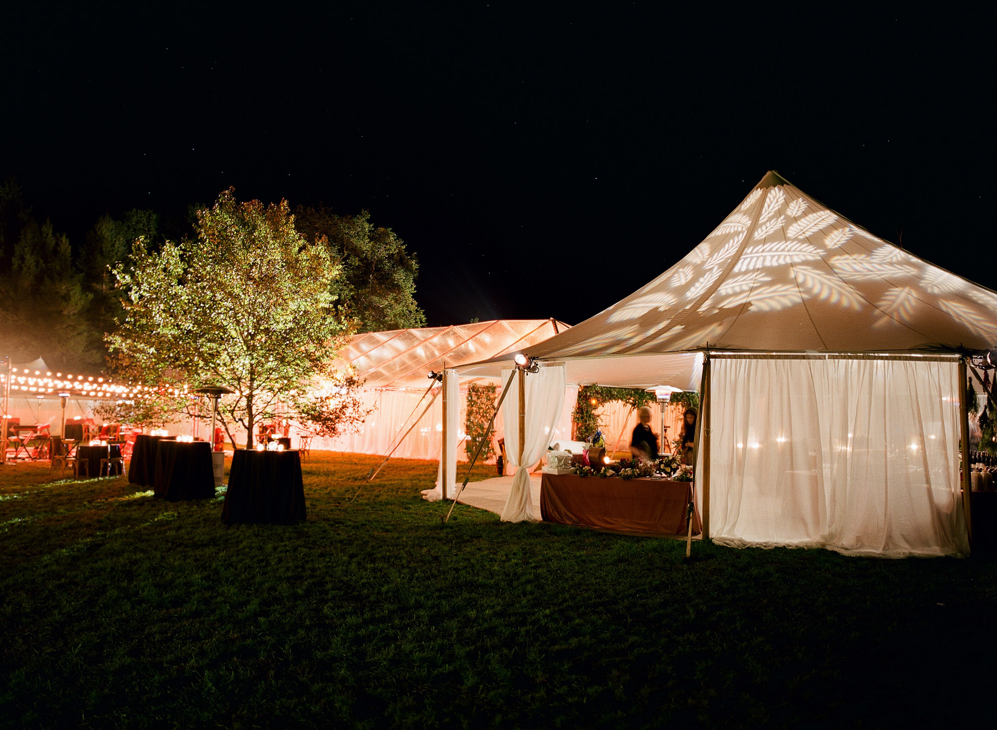 the lighting on the tent matched their custom field guide-inspired invitations -
