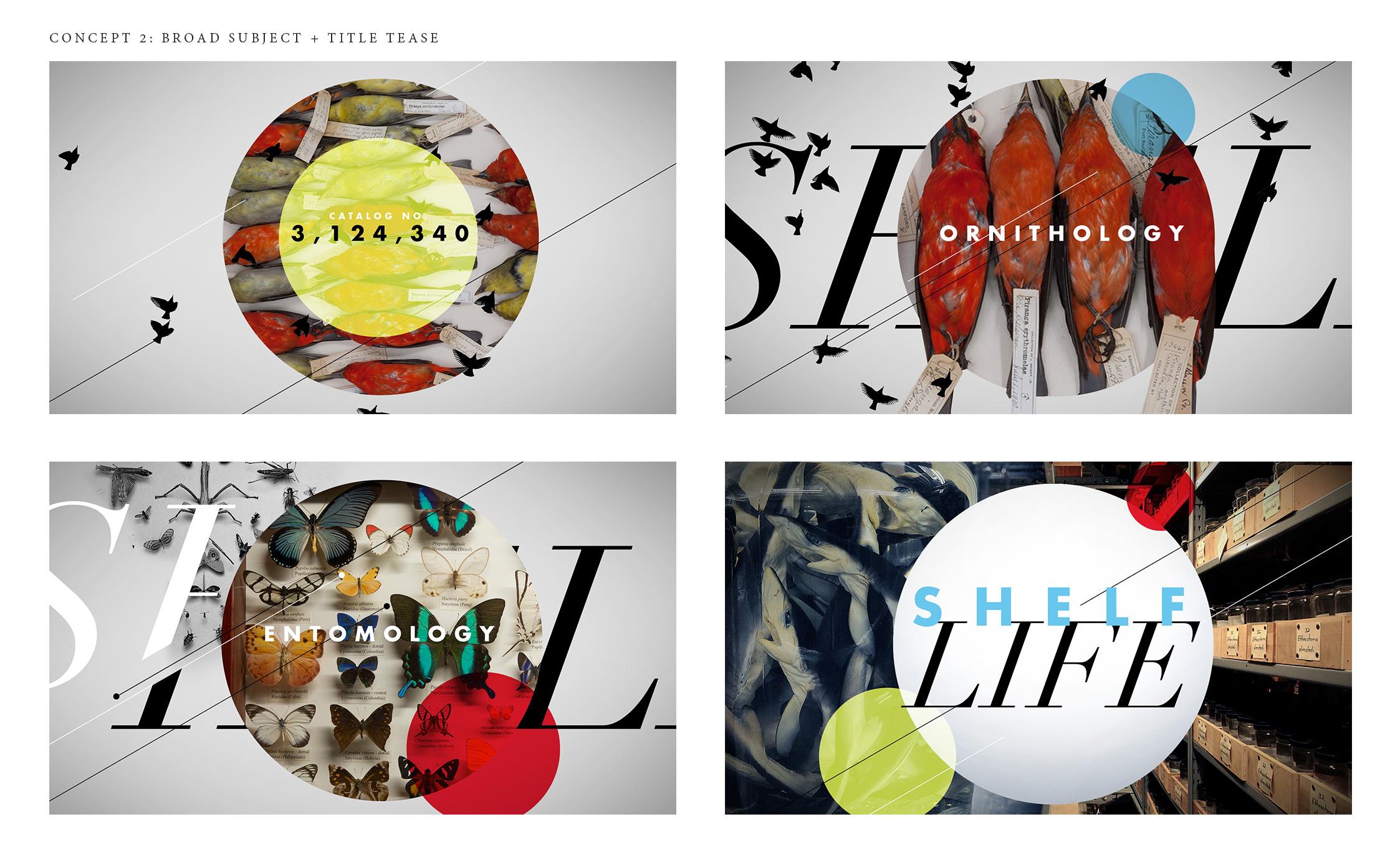 styleframe-concept2.jpg
