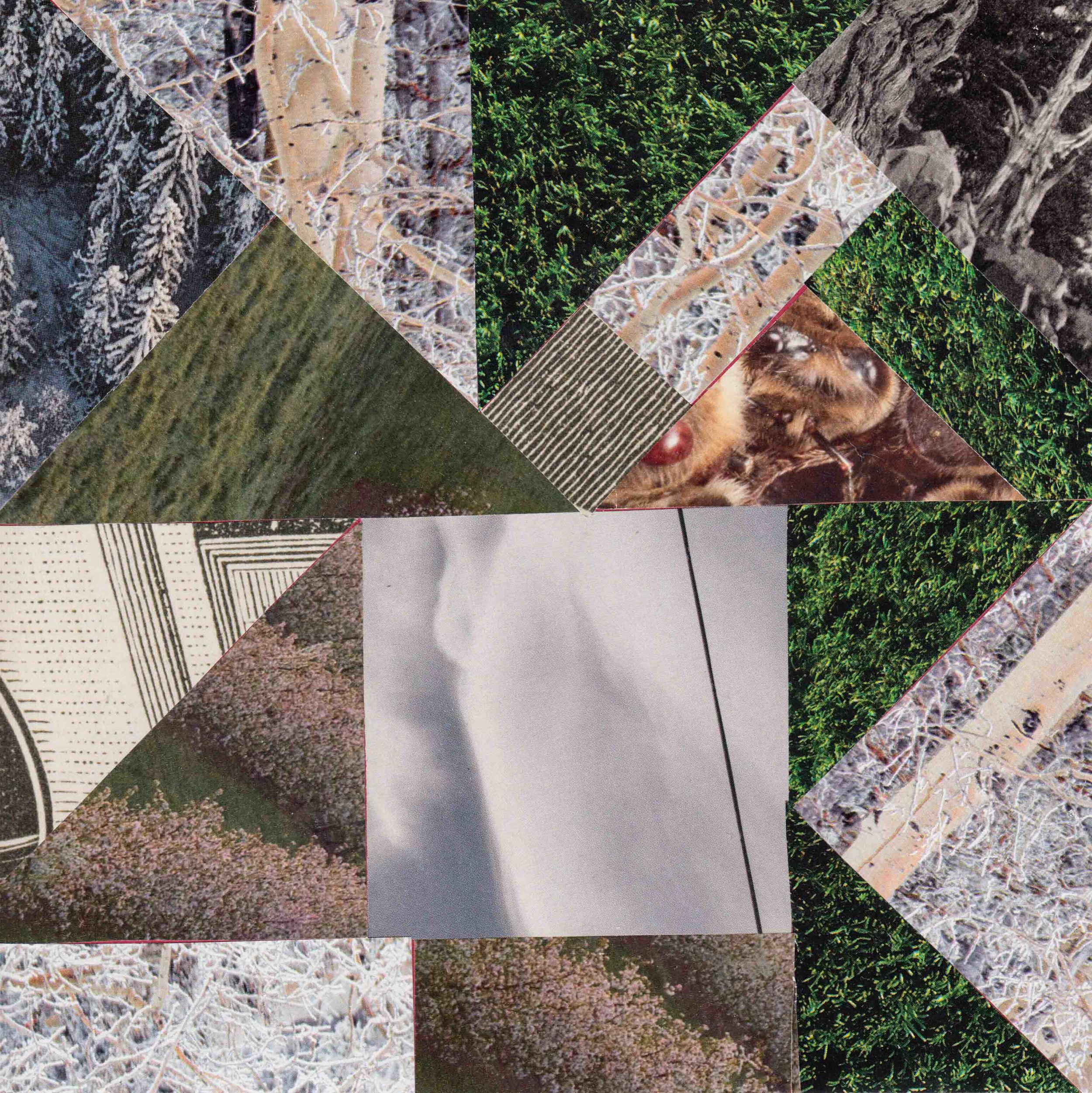 square collage1.jpg