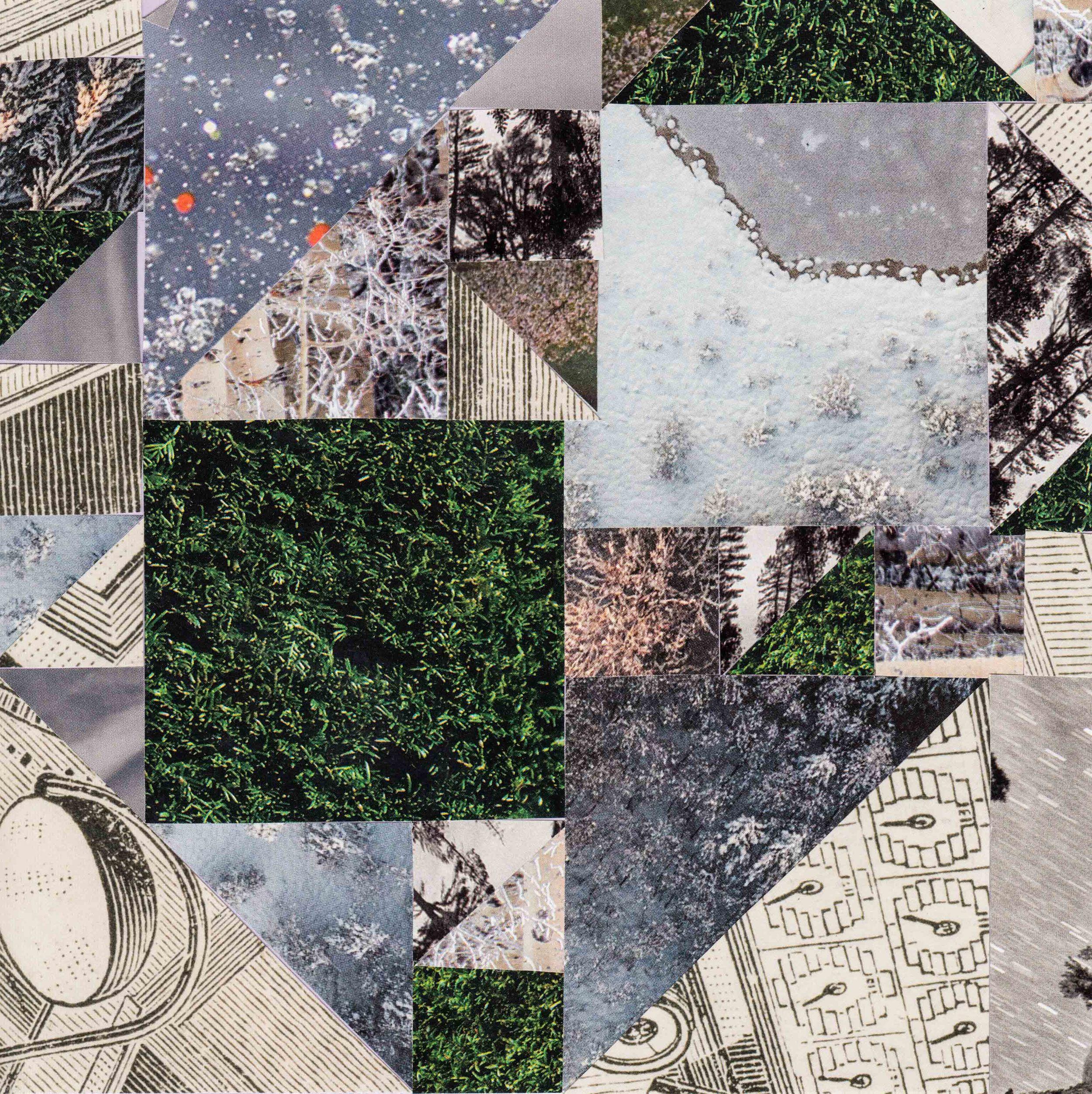 square collage2.jpg