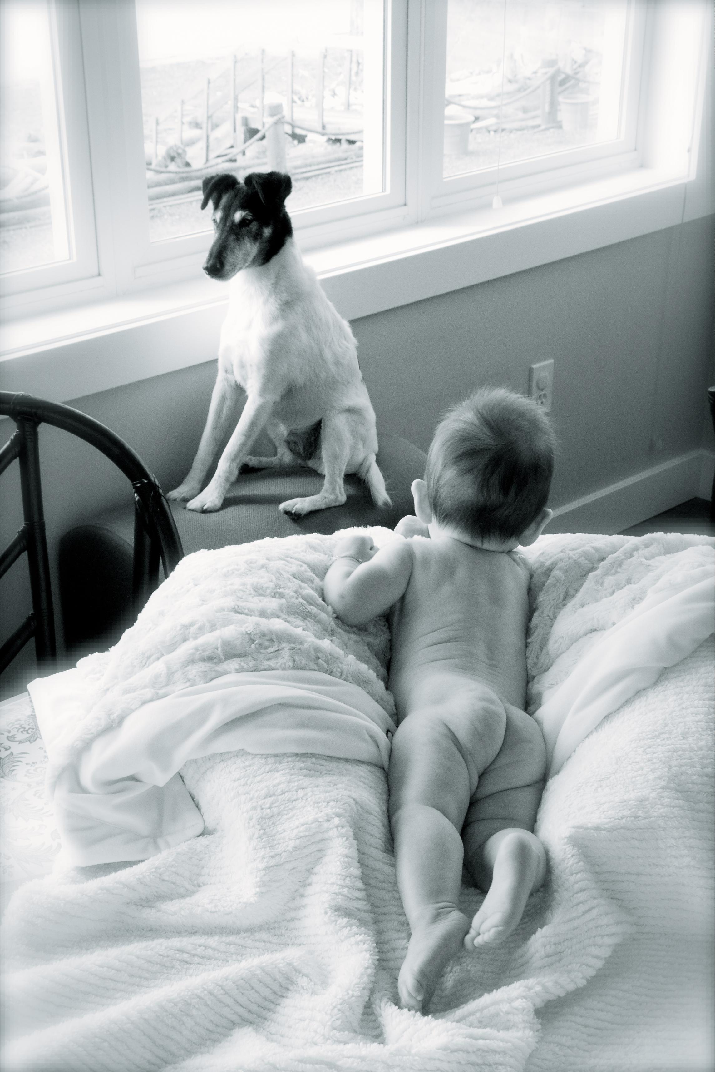 seattle-children-photographer-1.jpg