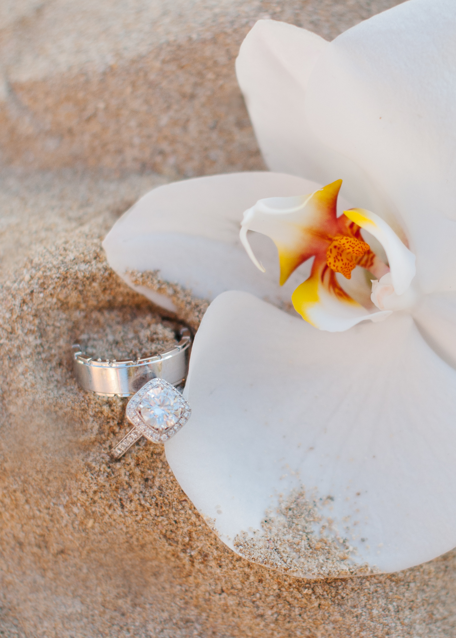 seattle-wedding-photographer-16-2.jpg