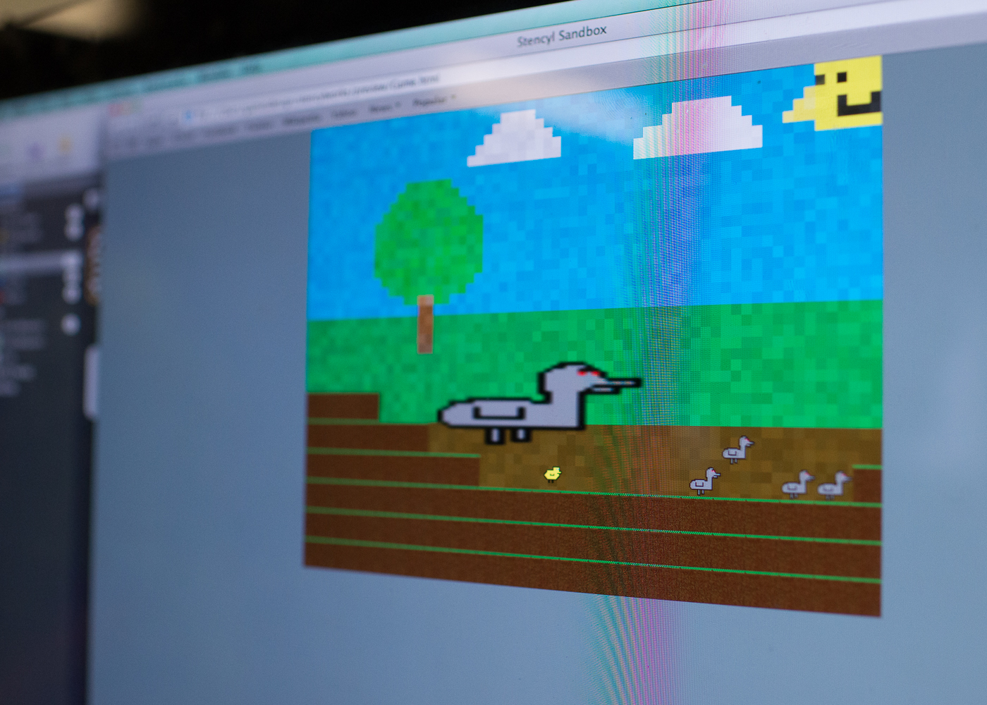 Karsten's Project Pond video game. The object is to save the ducklings from the evil robotic geese.