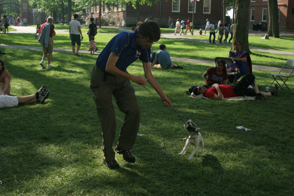 Successful search in Harvard Yard