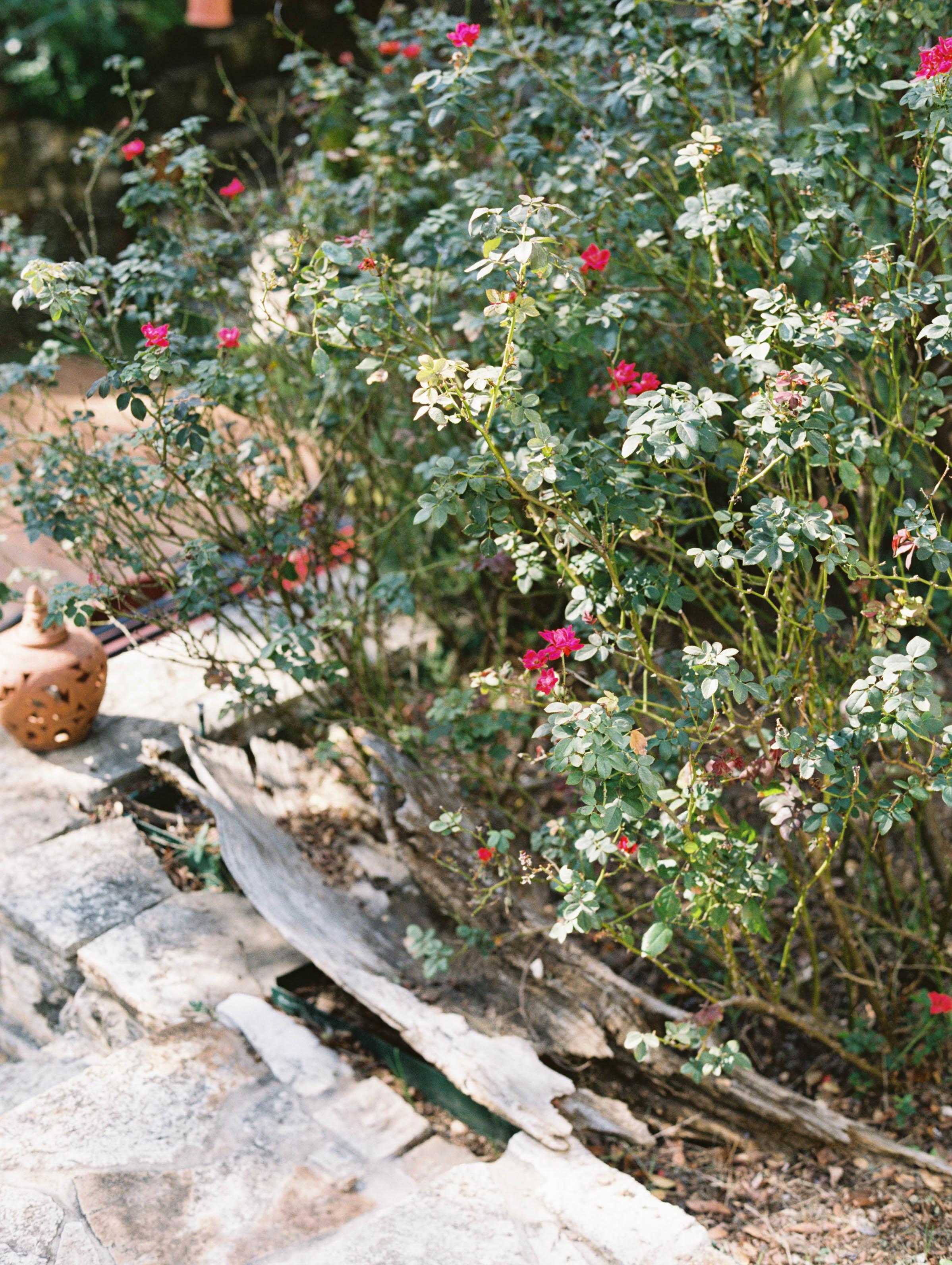 Alex-Kyrany-Wedding-Jennifers-Gardens-2.jpg
