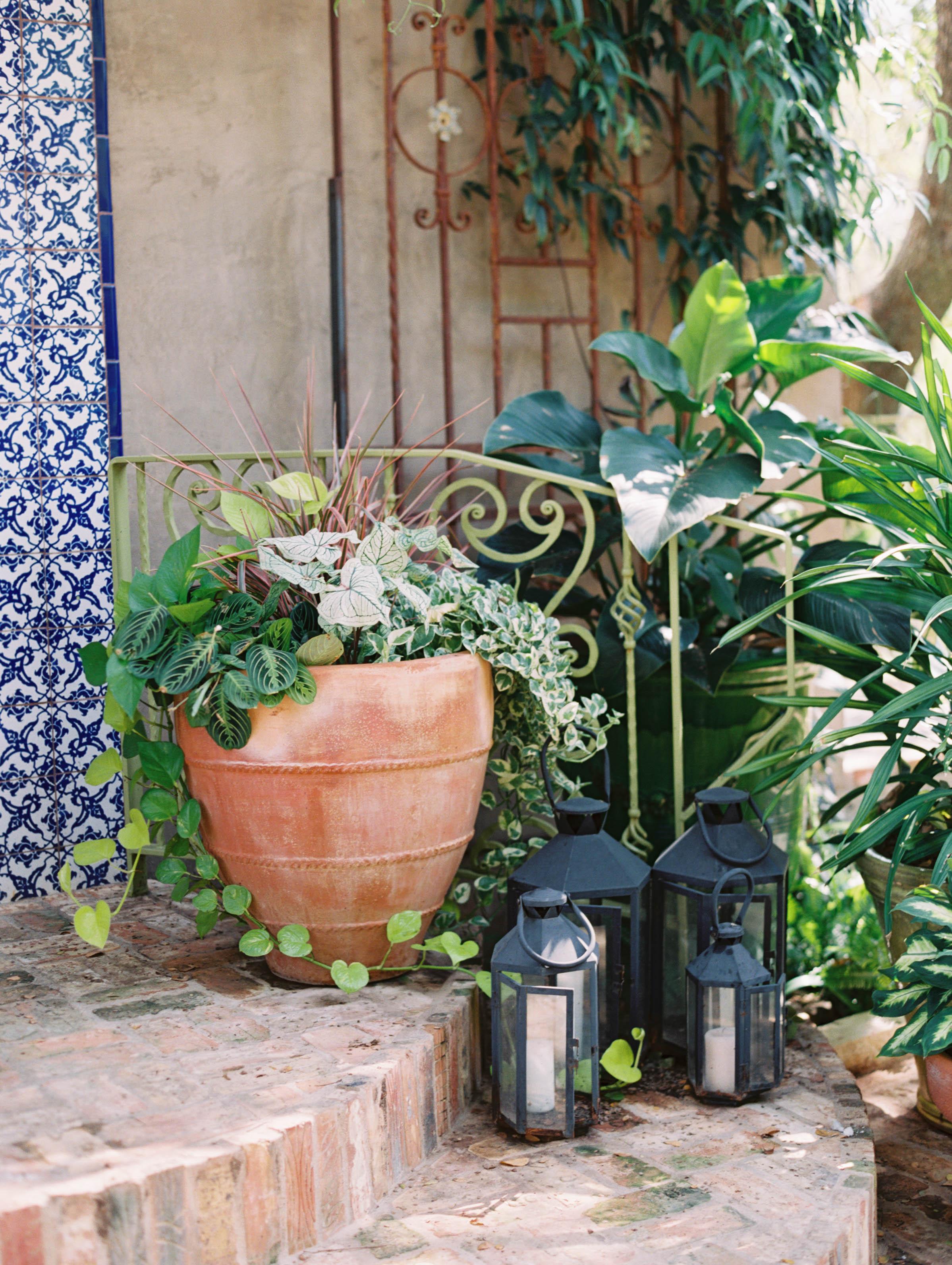 Alex-Kyrany-Wedding-Jennifers-Gardens-9.jpg
