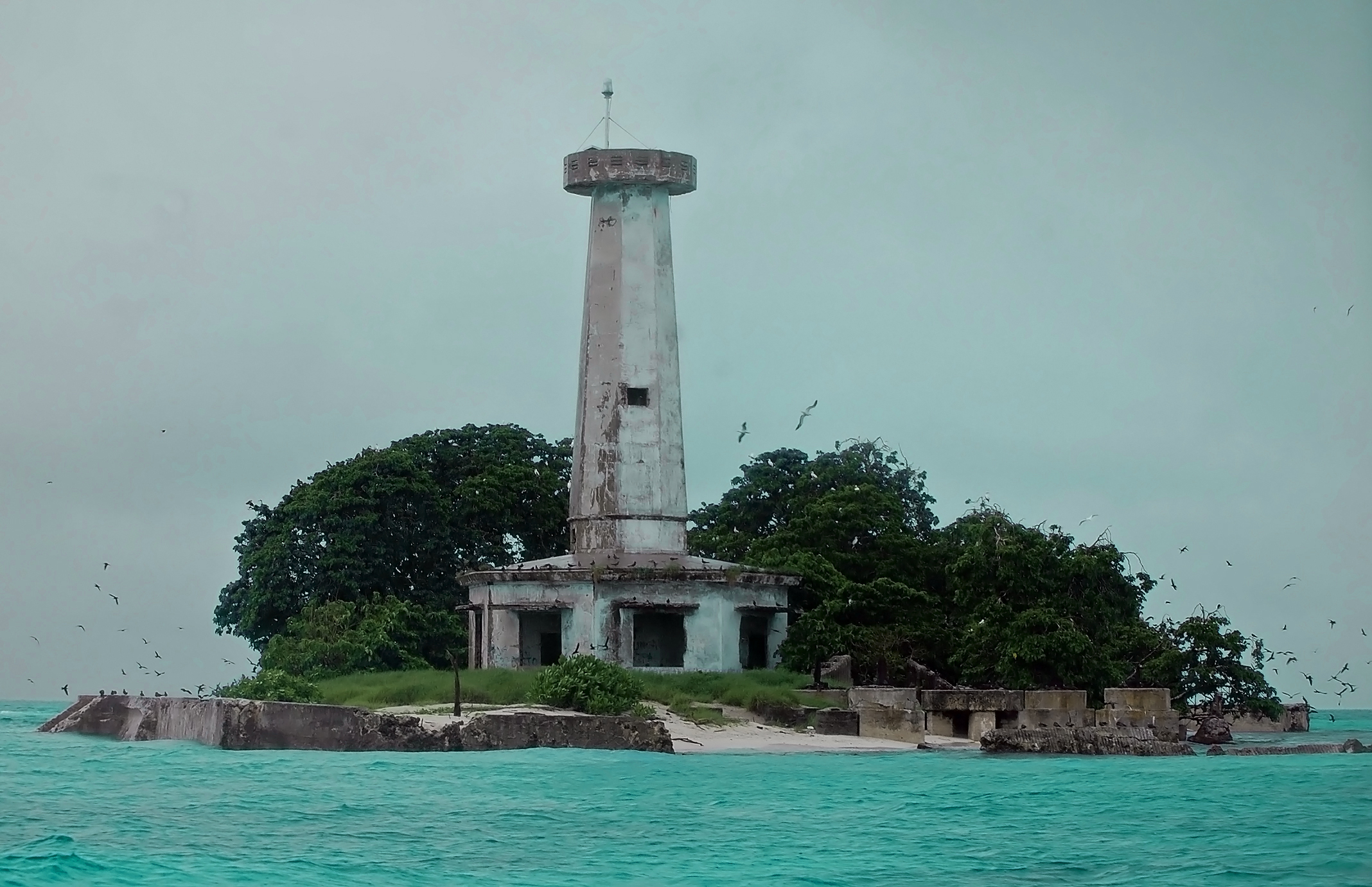 Parola or South Islet has heavier vegetation than its big brother. Up to 8,000 black noddies plus an assortment of other birds inhabit the island. It was here that the USS Guardian ran aground, reportedly due to faulty navigational equipment.  (Photo by Gregg Yan)
