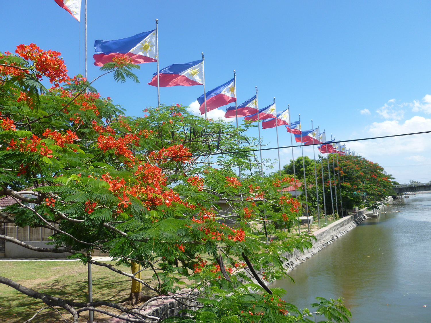 Philippine flags in front of the Kawit, Cavite Aguinaldo shrine  (Photo by Elizabeth Ann Quirino)