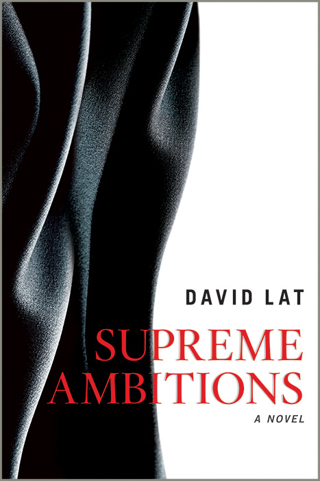 David Lat's  Supreme Ambitions  (Source: supremeambitions.com)