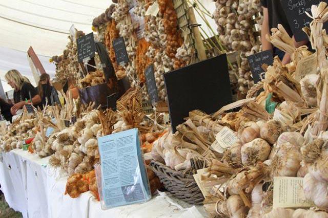The Garlic Festival (Source: Mertrokelan.com)