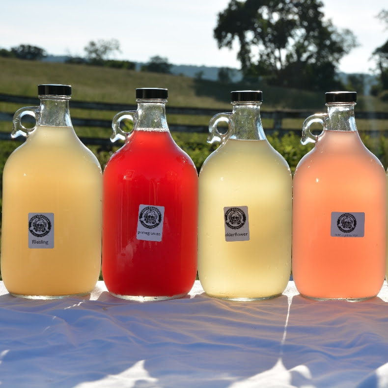 Craft Kombucha locations are conveniently around the DC area in Farmers' Markets or On Tap at retail and restaurant locations. (Photo from the Craft Kombucha Newsletter)