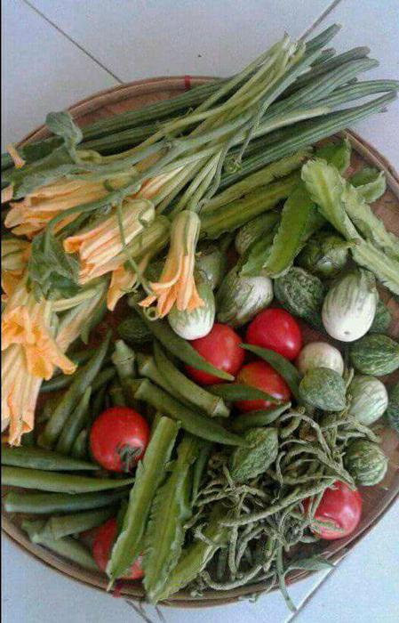 Pinakbet vegetables: (clockwise)bulaklak ng kalabasa (top left), sitaw (top) sigarilyas (winged bean, top right) round eggplant, small ampalaya (bitter melon), red tomatoes, himbaba-o (lower right), okra.
