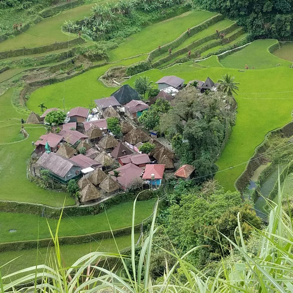 Ifugao basketry village outside of Banaue. (Photo by Jill Stanton)