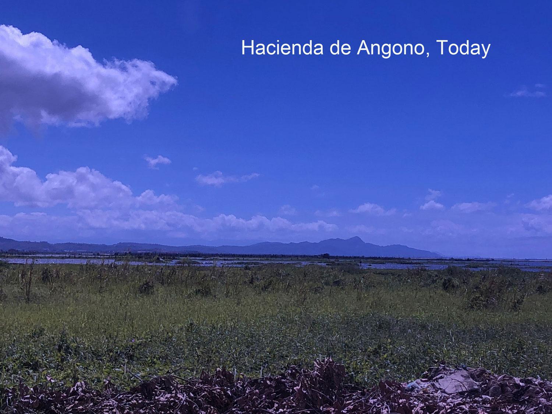 A glimpse of the former Hacienda de Angono (Photo by D. Wall, March 2018)